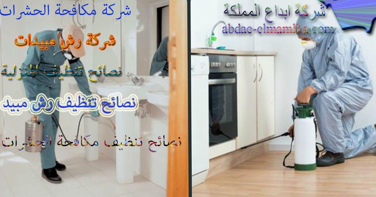 نصائح تنظيف المنزل من الحشرات